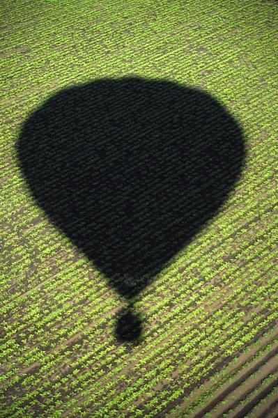 Balloon by jinstone