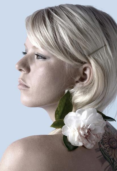 Camellia by beckas