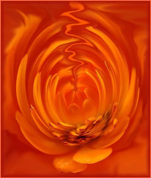 **Marigold skies** by dianah