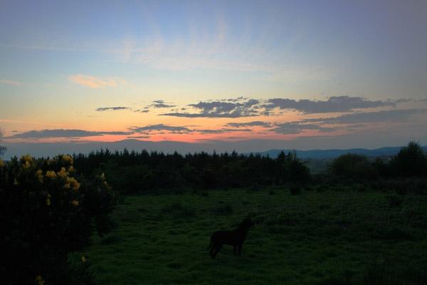 sunset evening 1 by Woodlander