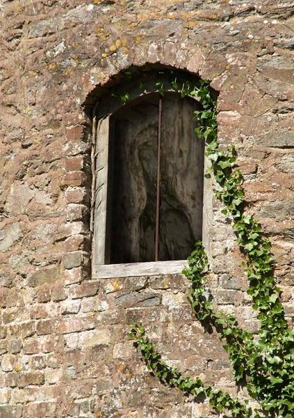 Ghostly Image by LindaSilcock