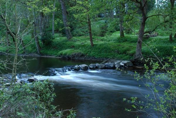 River scene by John45