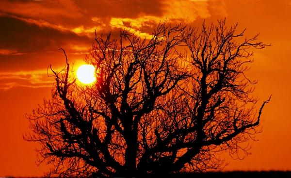 sunset by Kai