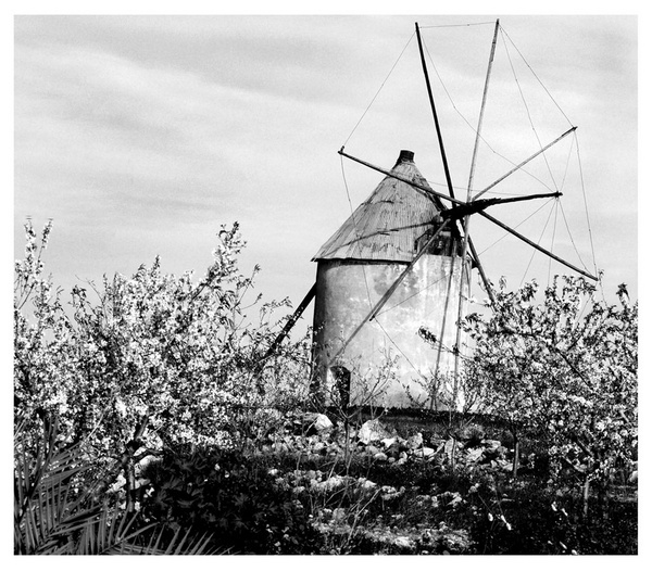 Windmill by linda63