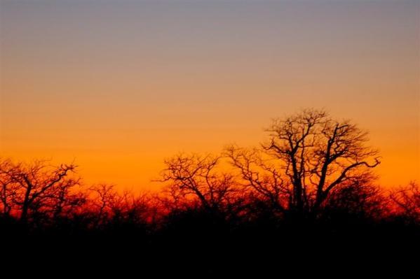 African Sky by IOWAndy