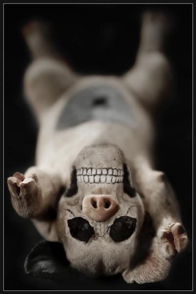 BEWARE! Swine Flu by Morpyre