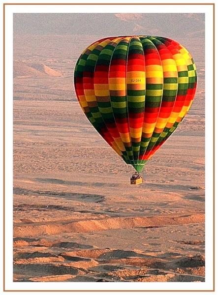Desert Flight by maryg
