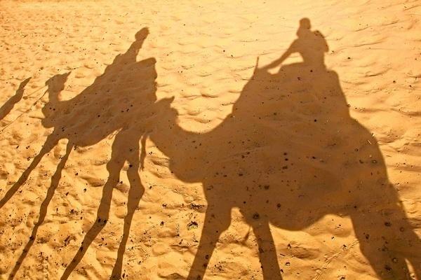 Desert by depthimages