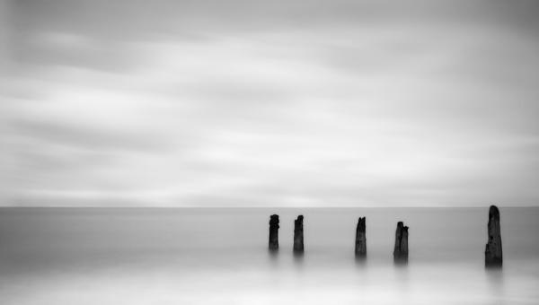 Shades of Grey by cdm36