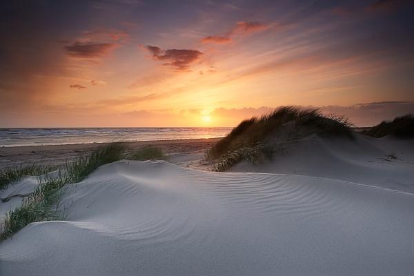 Sand Sculpture... by chris-p