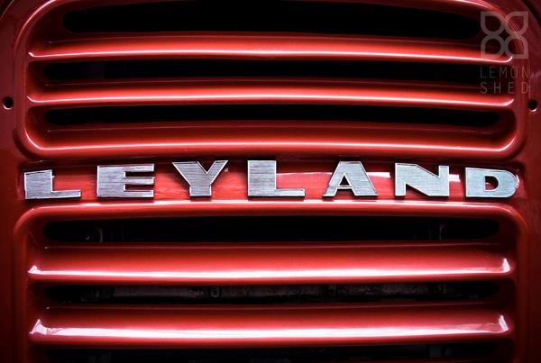 Leyland by lemonnelly