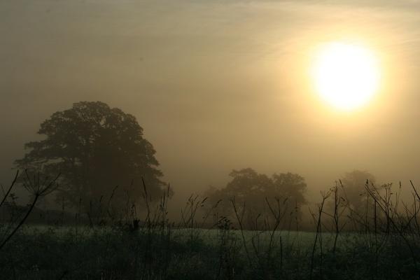 Hindlip Sunrise 2 by stevenclark