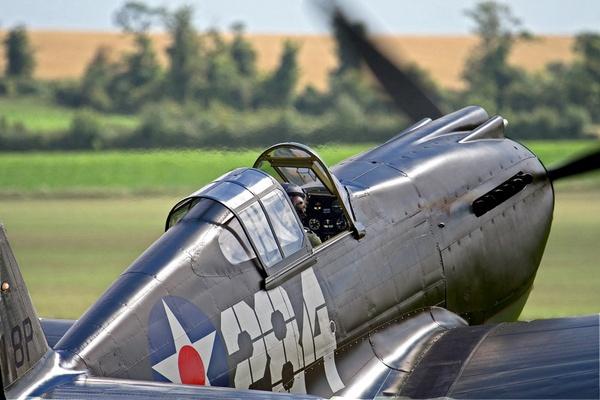 P40 Warhawk by RTR