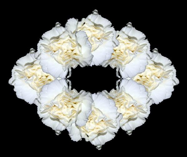 Carnation Bouquet by Artois