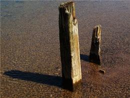 Seaside Posts
