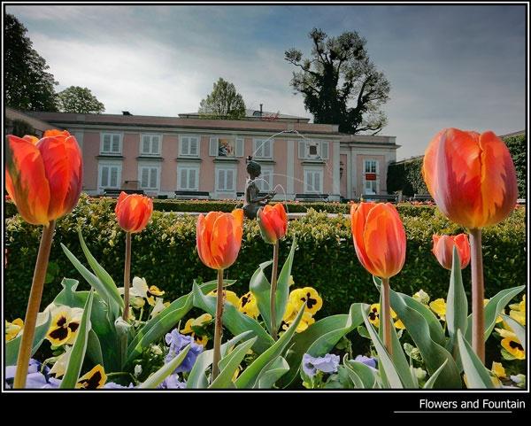 Flowers & Fountain by 11thearlofmar
