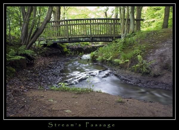 Streams Passage by DJLeroy