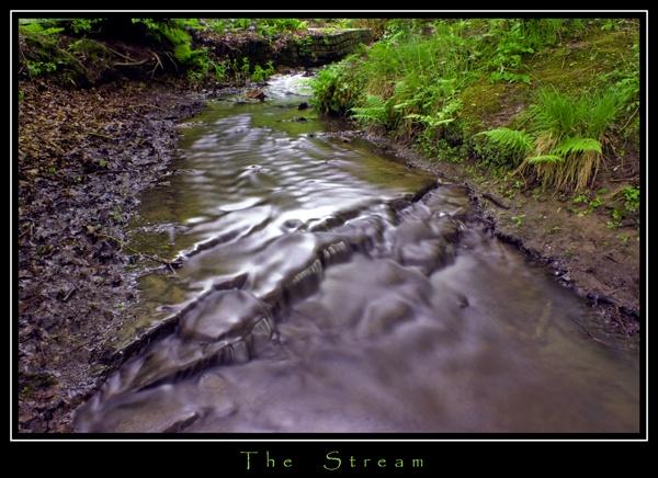 The Stream by DJLeroy