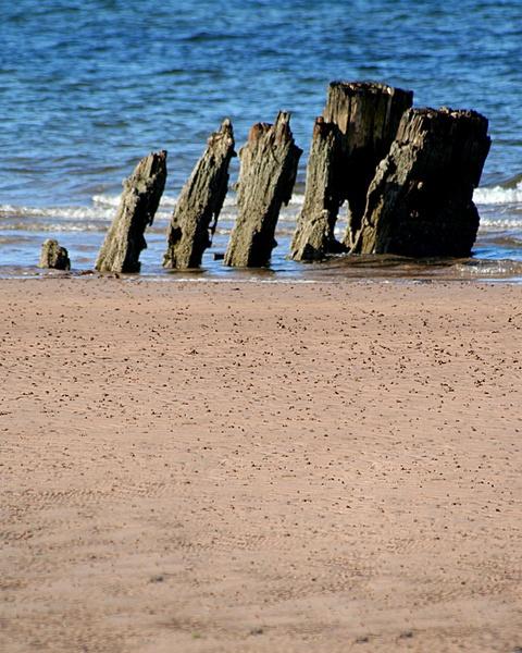 beach by gary1
