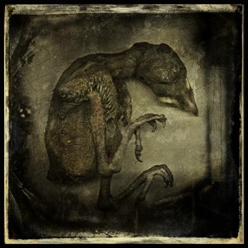 Sorrow by Cor