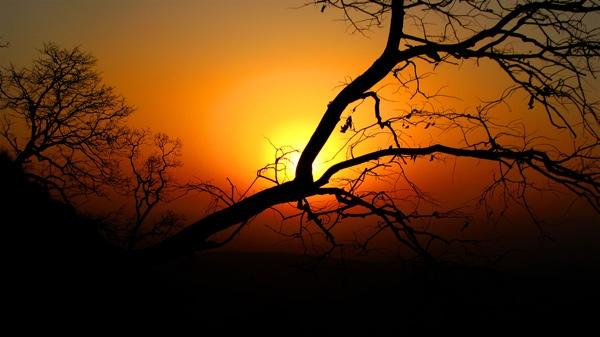 Sunrise by Saibal