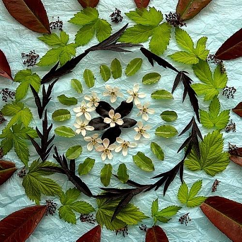 garden art by Ginamagnolia