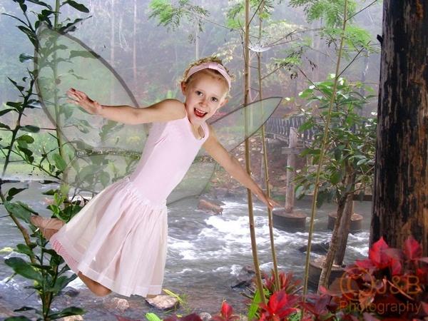 Believe in Fairys? by sheamist