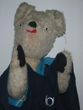 TAKE TWO OF POLAR BEAR by TimothyDMorton