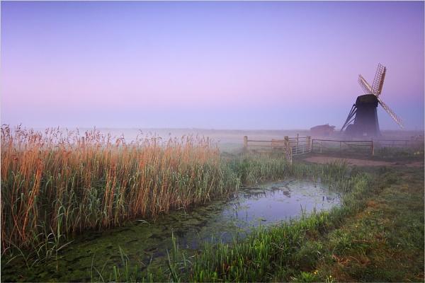 Misty Herringfleet by dmhuynh72