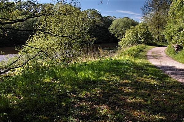 Lakeside walk by Kenfromsot