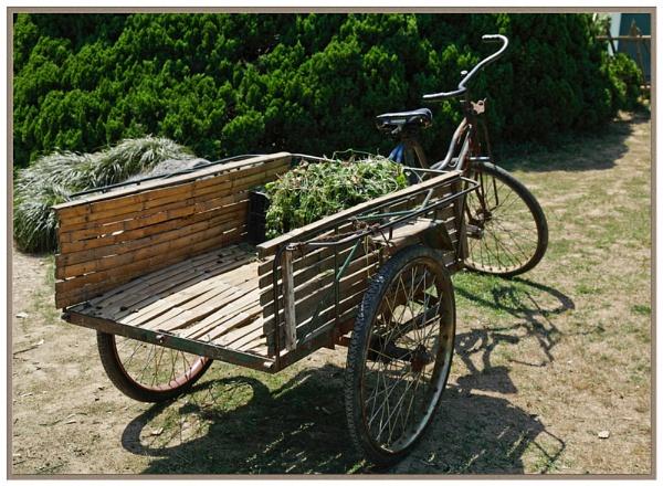 Three wheels on my wagon by Clayey