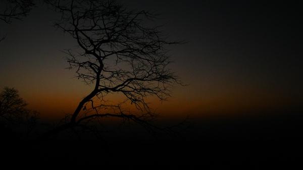 Alone by Saibal