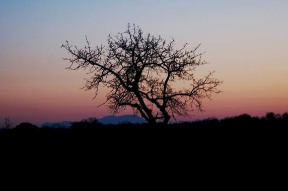 Sunrise over Motswari by IOWAndy