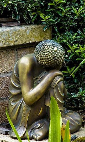 In the garden. by D80daz