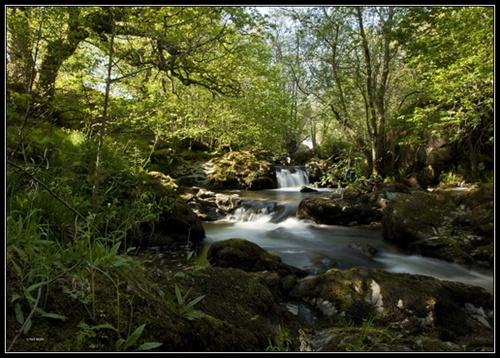 Aira Falls by lobo_blanco