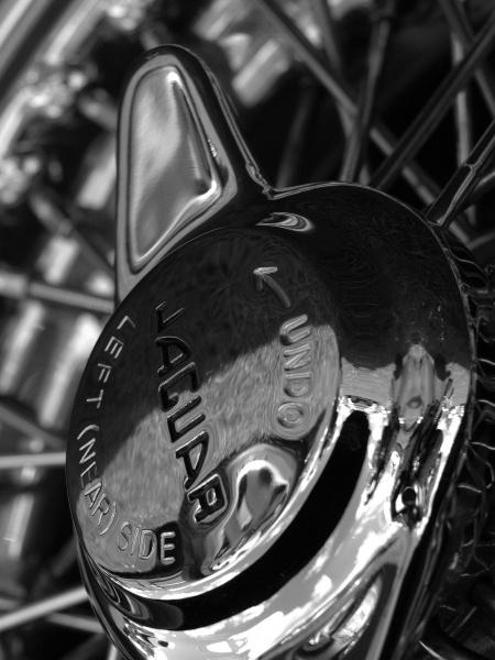 Classic wheel by Ginamagnolia