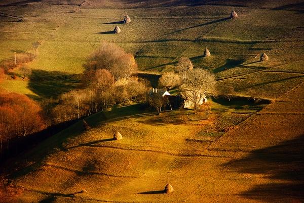 autumn shadows by marius_grozea