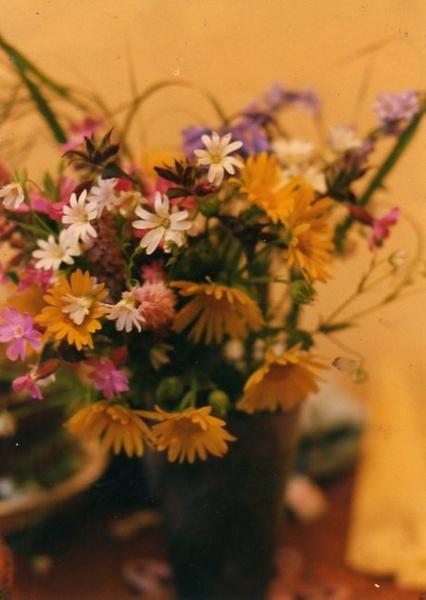 wild flowers in jar by bernie32