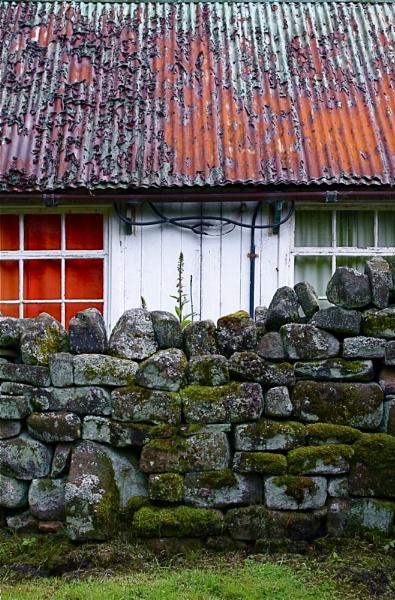 Orange and Green by alansdottir