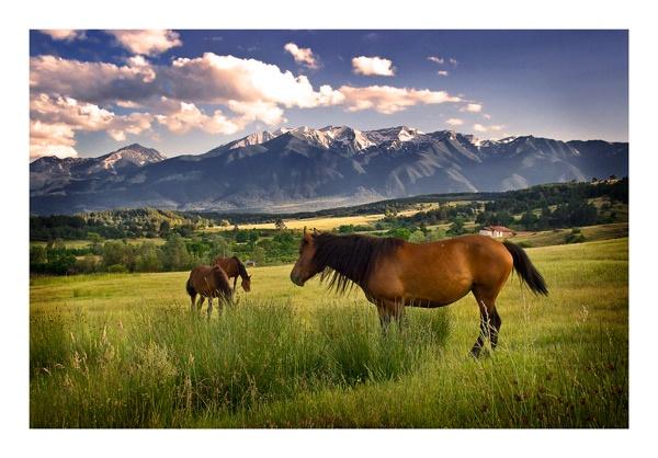 Pirin Mountains by Dimitre_P