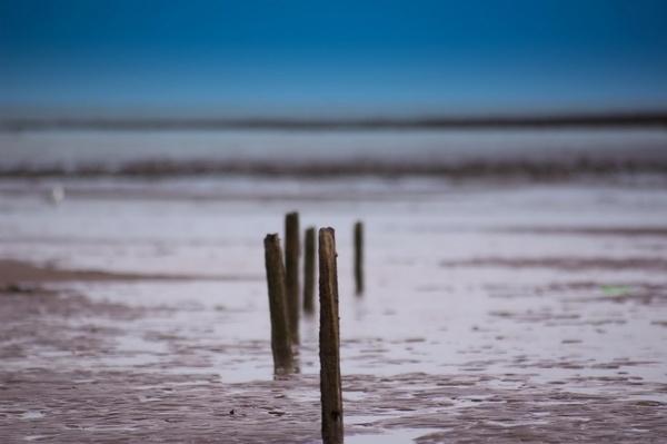 Beach by Nick_potts
