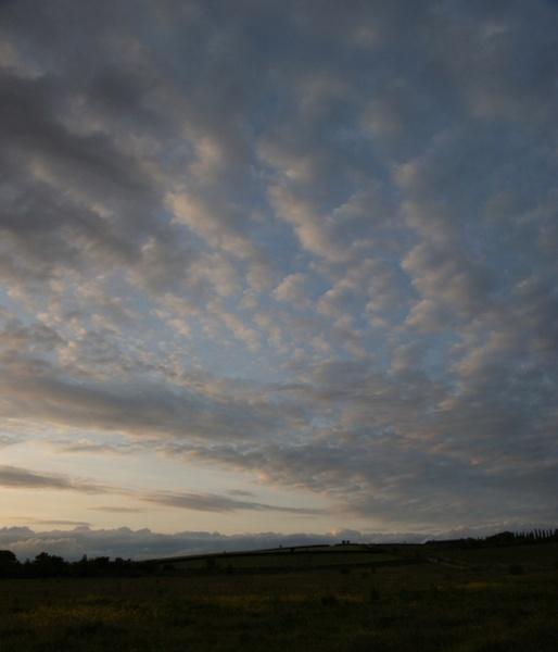 Evening Sky by catmandu