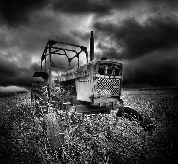 David Brown by alifink