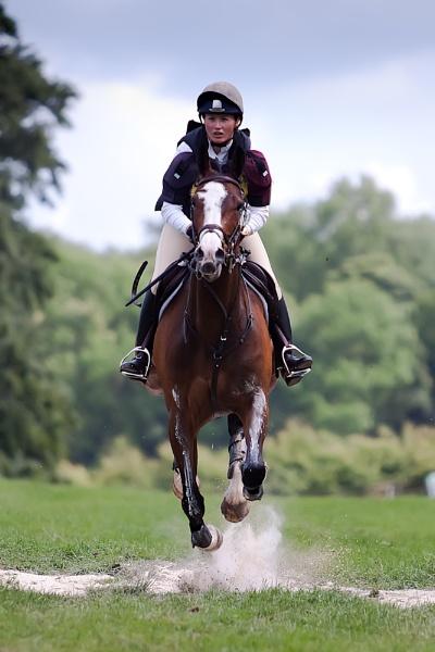 Gallop by BrianE