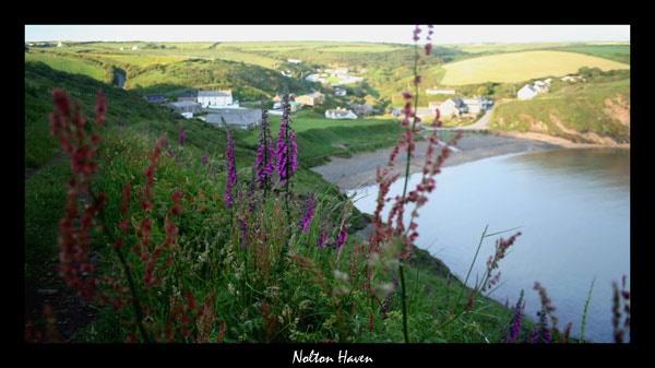 Nolton Haven by JakeK