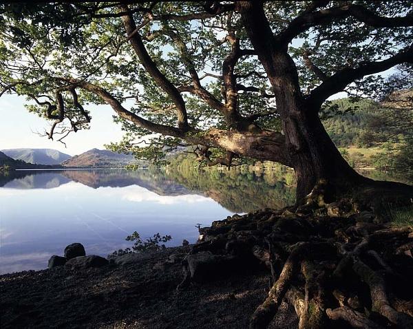 Ullswater morning by fennera