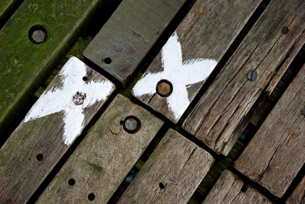 X\'s Mark The Spot by baclark