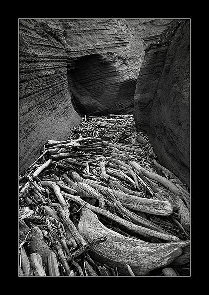 Driftwood Graveyard by kiteboy