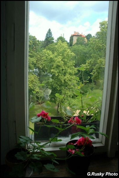 """22 June. \""""A View From a Bedroom Window\"""" by GeorgeRusky"""