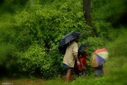 Monsoon Blooms -3-